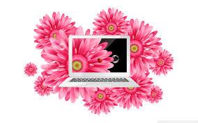 wallpaper za laptop laptop 3 4k hd desktop wallpaper for 4k ultra hd tv wide