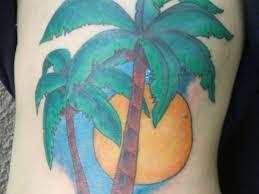 cool left side rib palm tree
