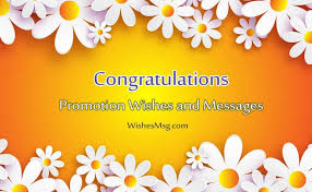 congratulations promotion card promotion wishes congratulation messages for promotion