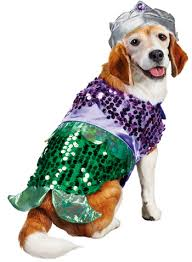5 tail waggingly cute dog halloween costumes