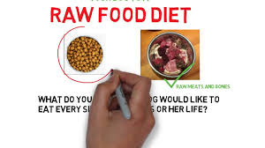 two reasons to switch your dog to a raw food diet youtube