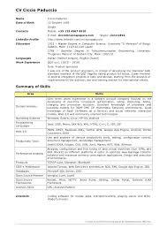 java developer resume sle java developer resume java developer resume sles java