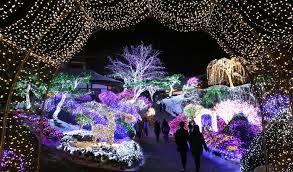 christmas light displays los angeles 2016 best holiday christmas light displays st nicks