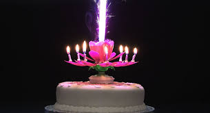 spinning birthday candle rotating musical flower birthday candle blue co uk office