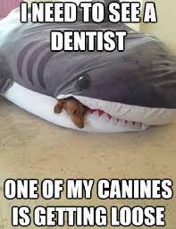 Wiener Dog Meme - sharp wiener dog dogs know your meme