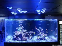 led reef aquarium lighting the living marine aquarium manual chapter 5 lighting equipment