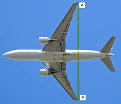 wingspan wikipedia