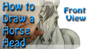 how to draw a horse head front view youtube
