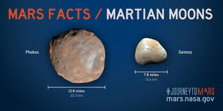 mars facts mars exploration program