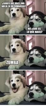 Zumba Meme - 25 best memes about zumba zumba memes