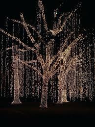 easy christmas light ideas christmas light ideas lights ideas for outside home light decorating