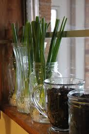 kitchen window sill ideas garden ideas small herb garden window herb garden ideas indoor