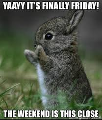 Finally Friday Meme - yaayy it s finally friday the weekend is this close cute bunny