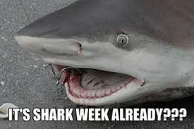 Shark Meme - here come the shark week memes