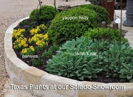 Backyard Landscaping Ideas For Small Yards Best 25 Texas Landscaping Ideas On Pinterest Texas Gardens