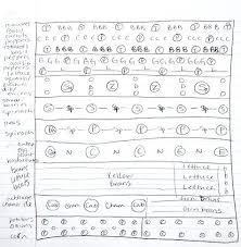 layout kitchen garden sle vegetable garden plans vegetable and herb garden layout