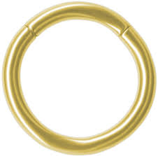 gold piercing rings images Gold color titanium segment nipple ring hoop 14g hypoallergenic jpg