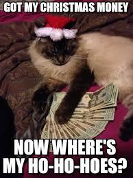 Cash Money Meme - got my christmas money christmas cash cat meme on memegen