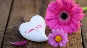 Flower Love Pics - love flower image gzsihai com