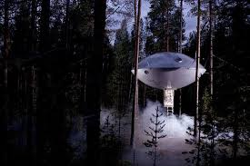 tree hotel sweden treehotel 2018 prices reviews photos harads sweden hotel