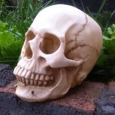 life size halloween props skeleton halloween prop promotion shop for promotional skeleton