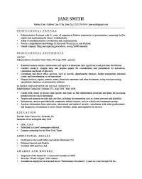 100 profile resume profile examples resumes sales