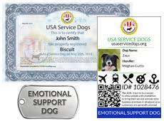 service dog documentation usa service dogs