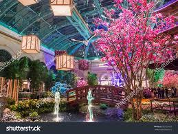 Botanical Gardens In Las Vegas Las Vegas March 26 Season Stock Photo 269721833