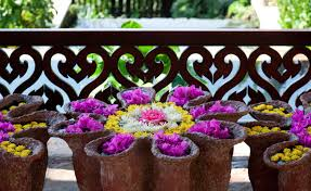 Patio Plants For Sun 35 Patio Potted Plant And Flower Ideas Creative And Lovely Photos