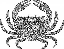 free printable coloring pages summer crab summer diy