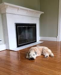 Dogs On Laminate Floors Everyone Needs A Wheaten On Their Floor Valspar Brown Buzz Walls