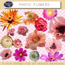 Real Flowers - floral clip art flowers photo flowers clip art real flowers