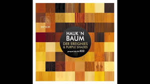 Purple Shades by Hauk N Baum Purple Shades Original Mix Youtube