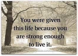 you are enough to live this quote lifechoicequotes