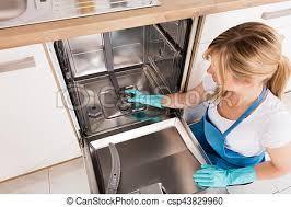 nettoyage cuisine lave vaisselle femme nettoyage cuisine lave vaisselle image