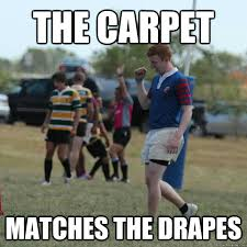 Match The Drapes The Carpet Matches The Drapes Success Ginger Quickmeme