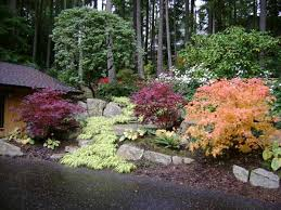 pacific northwest landscaping design nw landscaping pinterest