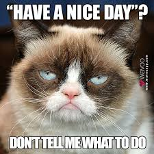 Have A Nice Day Meme - wavoo on twitter have a nice day meme lol grumpycat http t