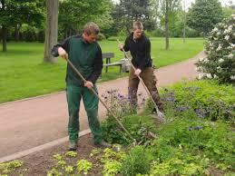 garten und landschaftsbau gärtnerin oder gärtner fachrichtung garten und landschaftsbau