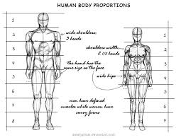 Female Body Anatomy Drawing The 25 Best Human Body Proportions Ideas On Pinterest Body