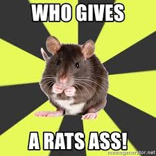 Rats Ass Meme - who gives a rats ass survivor rat meme generator