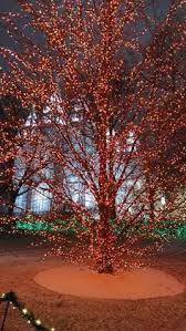 temple square lights 2017 schedule 8 facts about the best christmas lights in utah temple square