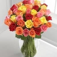 multicolor roses pinaygifts multicolored roses