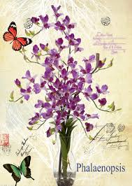 compare prices on flower butterfly online shopping buy low price