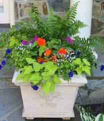 352 best outdoor flower container ideas images on pinterest