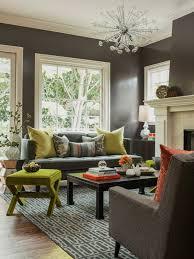 Grey Sofa Living Room Ideas Safarihomedecorcom - Grey living room design ideas