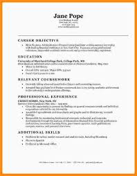 Entry Level It Resume Template Example Resume Summary Resume Example And Free Resume Maker