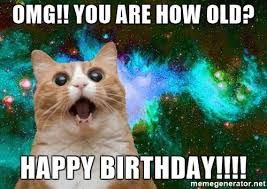 20 adorbs happy birthday cat memes word porn quotes love quotes
