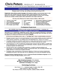 Product Manager Sample Resume by Resume Writing Services For Professionals And Fresh Graduates