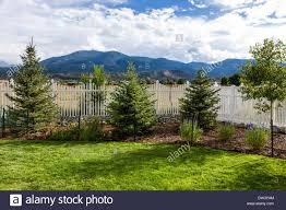 backyard view of summer rain garden u0026 fencing stock photo